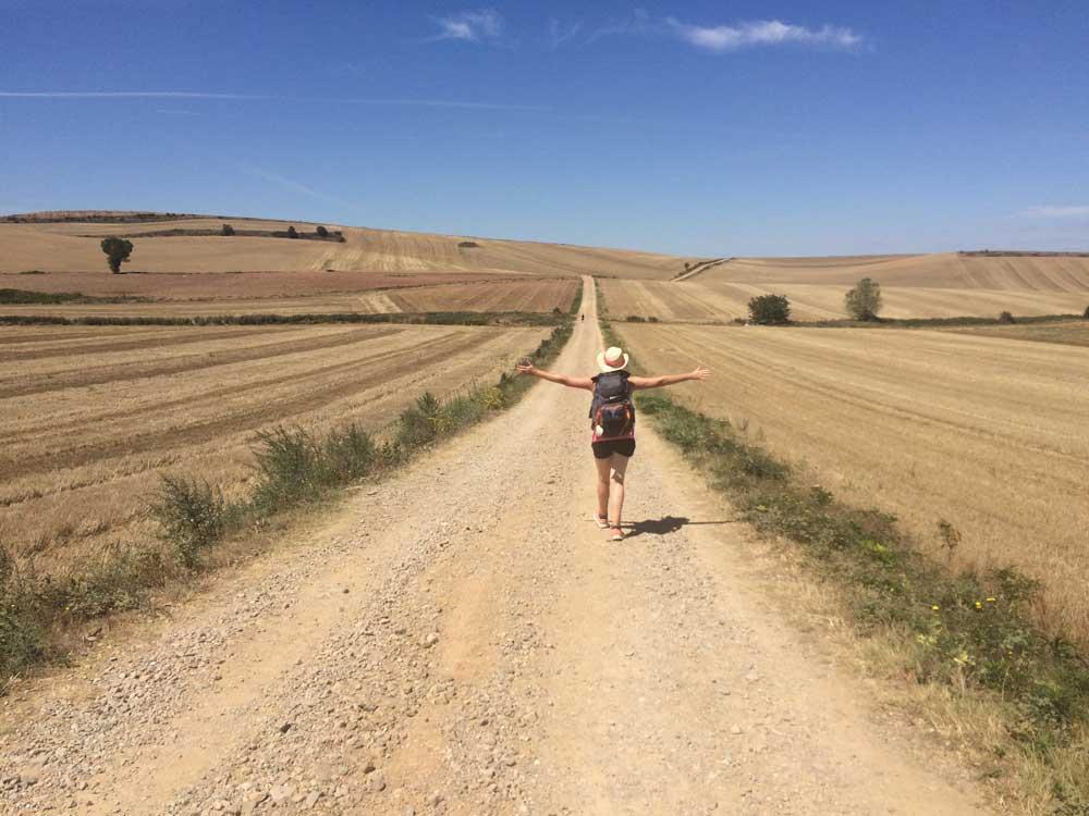 Meseta Camino de Santiago